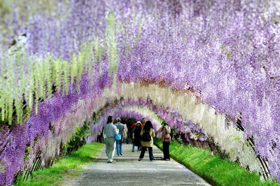 2.福岡旅行のベストシーズンは?