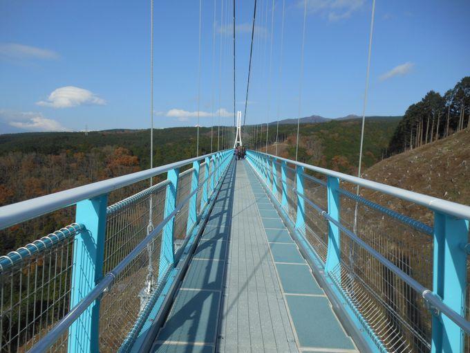 日本最長!歩行者専用のつり橋「三島スカイウォーク」