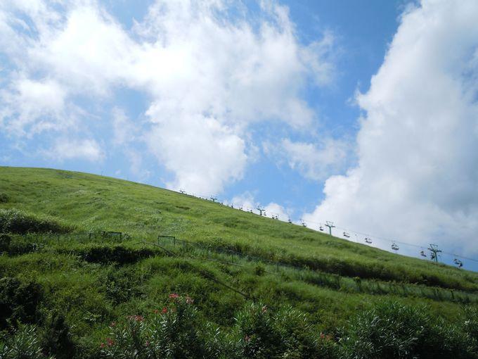2.大室山