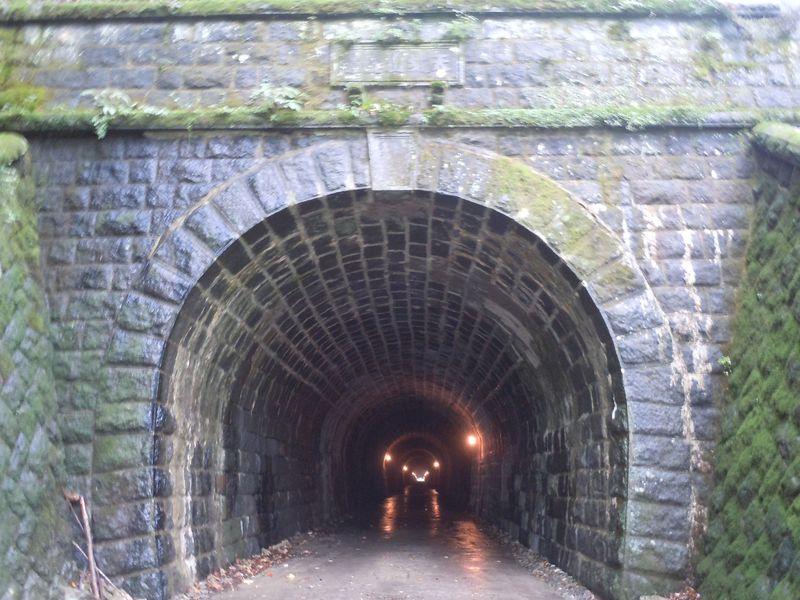 伊豆の名所と言ったら、ここ!ノーベル賞作家 川端康成の名作「伊豆の踊子」の舞台、旧天城トンネル。