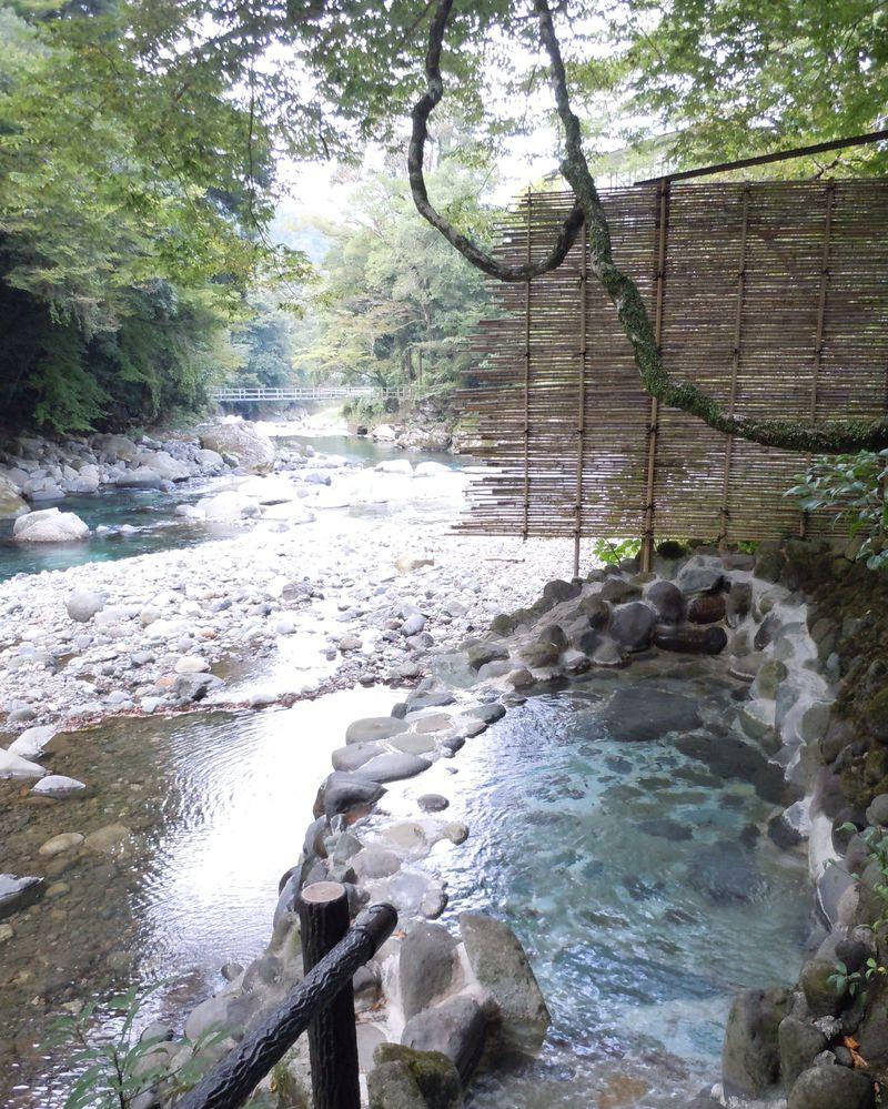 飲める極上の温泉がある!不朽の名作「伊豆の踊子」執筆の宿として知られる伊豆 湯ヶ島温泉「湯本館」