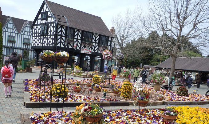 四季を通じて楽しめる花と緑のテーマパーク「修善寺虹の郷」