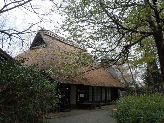 旧徳山村から移築した古民家