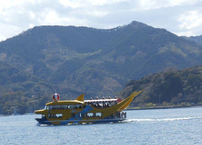 イルカの形をした遊覧船「チャッピー」