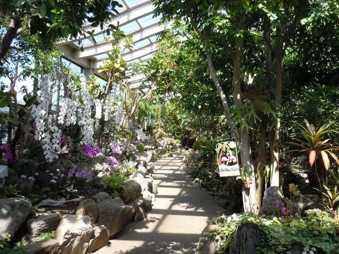 四季を通して楽しめる温室