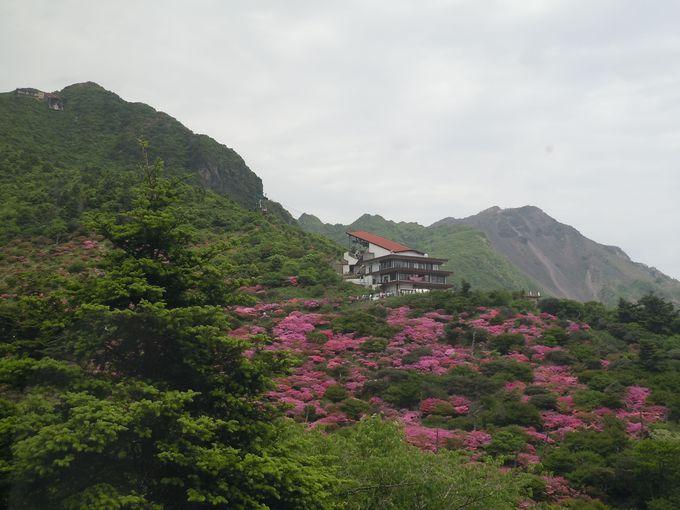 日本最初の国立公園