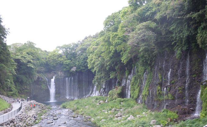 3.「滝巡り」静岡は名瀑揃い