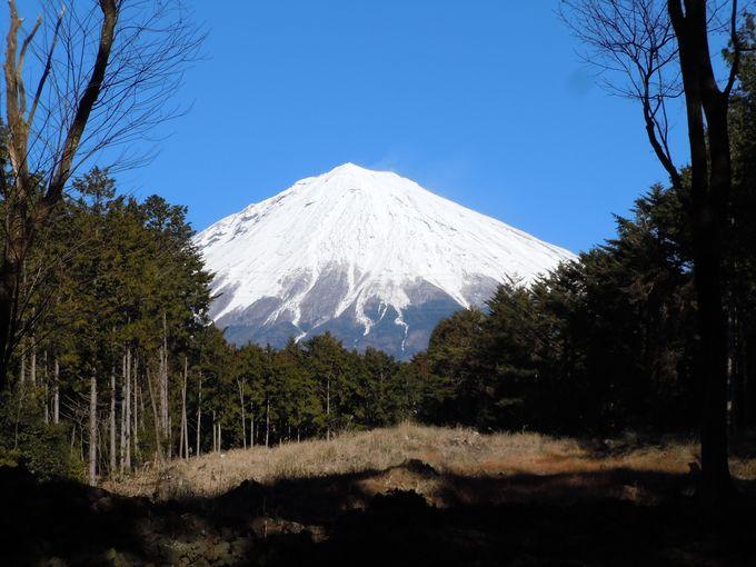 富士山パワー全開!