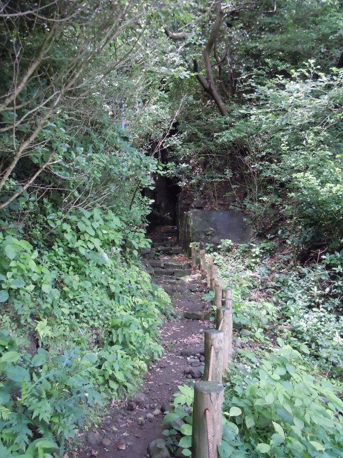 本当に、探検できる洞窟は伊豆にある!!