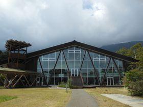 富士山麓の自然学校!富士宮「田貫湖ふれあい自然塾」