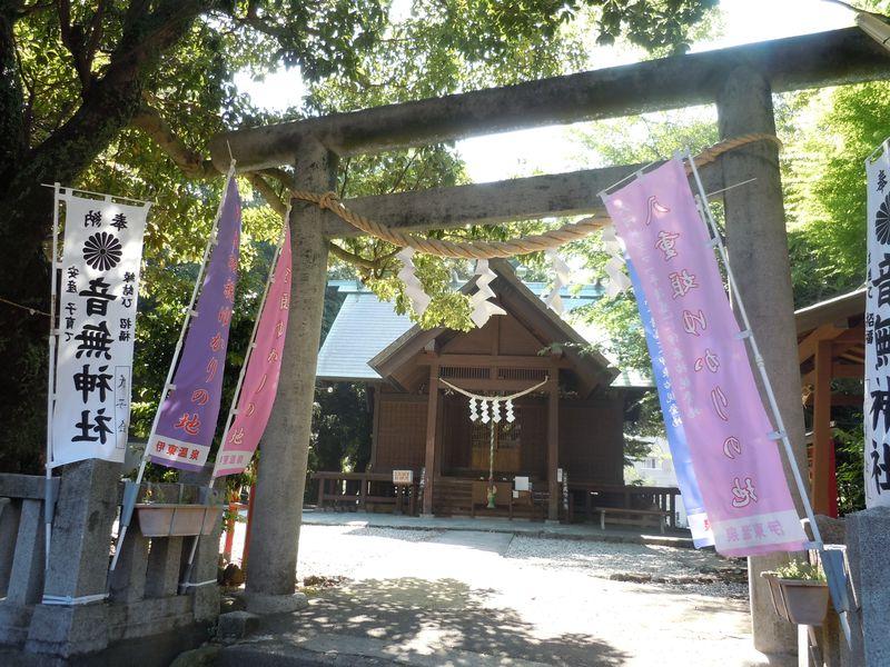 お尻で相撲を取る!?伊東温泉・天下の奇祭「尻つみ祭り」