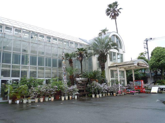 立ち寄らなくちゃ損!温泉の良さを生かした植物園!!