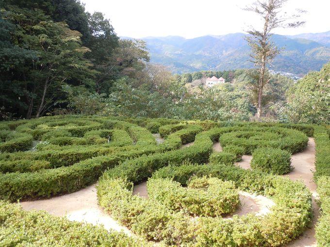 世界に通じる?!世界的な庭園も見られる!