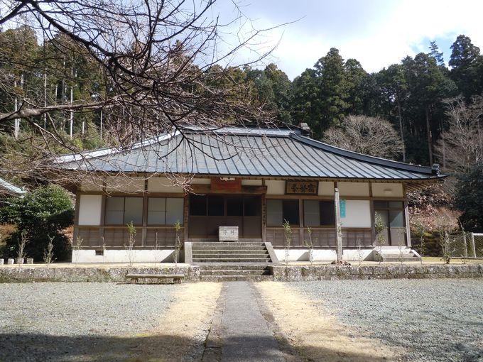 1200年前に開かれた!伊豆地域で最も古い寺院の一つ「宝蔵院」