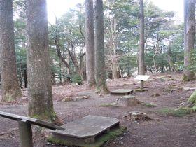 """日本初の""""瞑想の森""""!?伊豆・松崎「富貴野山21世紀の森」"""