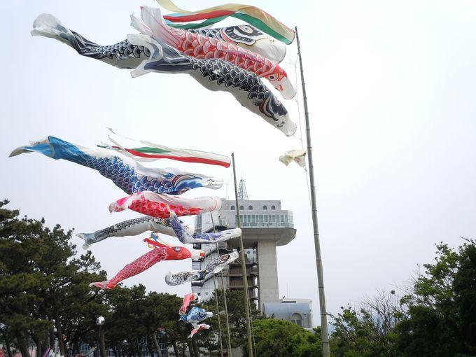 国内最大級の水門の下で開催される、毎年恒例のフェスティバル?!