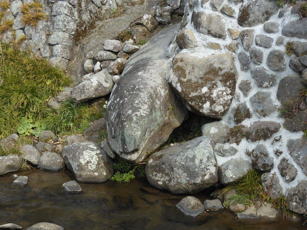 親子の蛇が揃う!見ているだけでも縁起が良い石