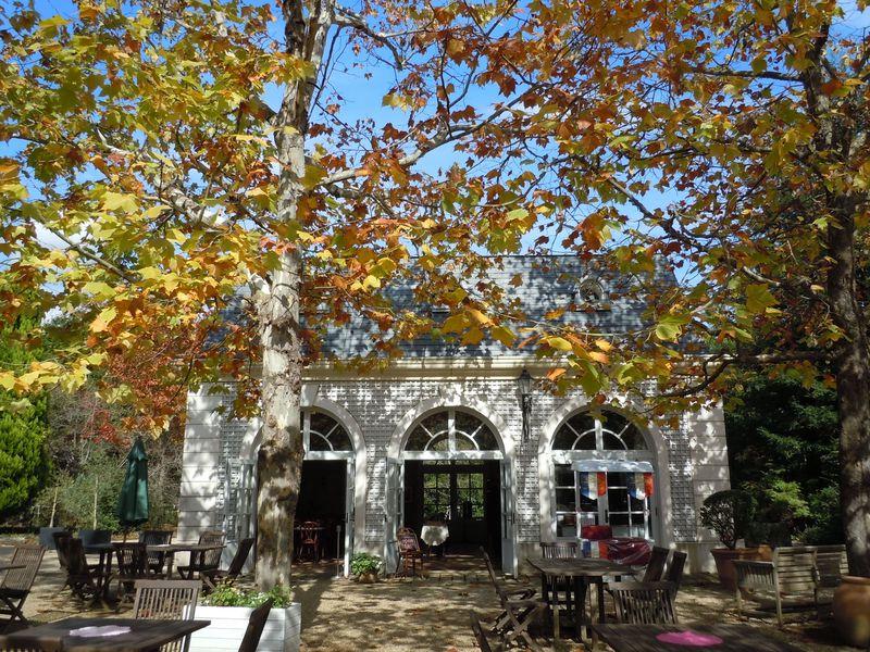 秋は希少なバラの実も見られる!伊豆「河津バガテル公園」