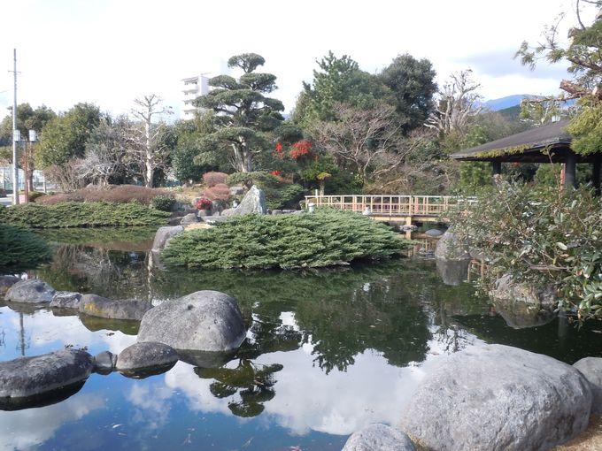 電車の待ち時間に見たい!優美な庭園「白田川親水公園」