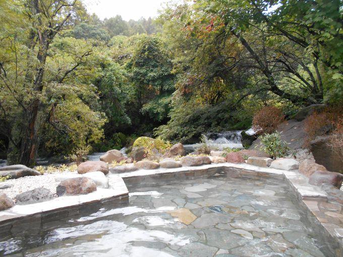 四季の風情を味わえる!最高のロケーションの湯宿