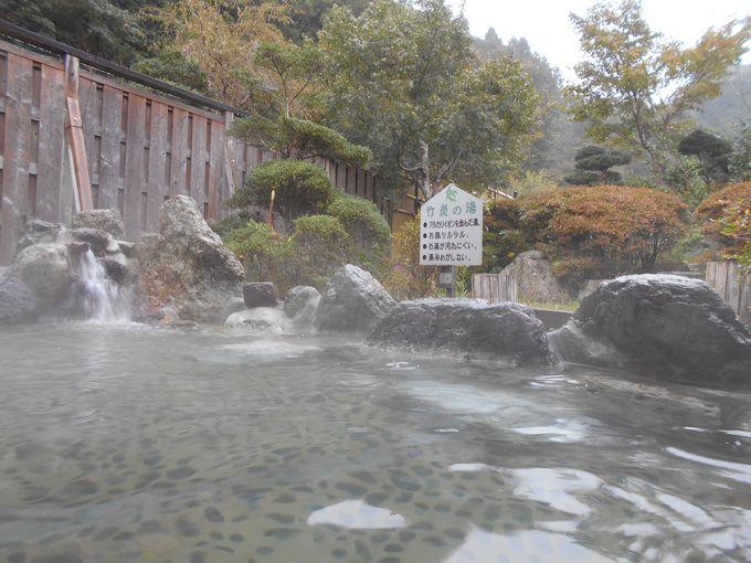 森の木々から元気をもらえる!エネルギッシュな温泉