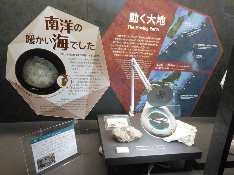 修善寺・伊豆半島ジオパークミュージアム「ジオリア」で大地の謎に迫る!