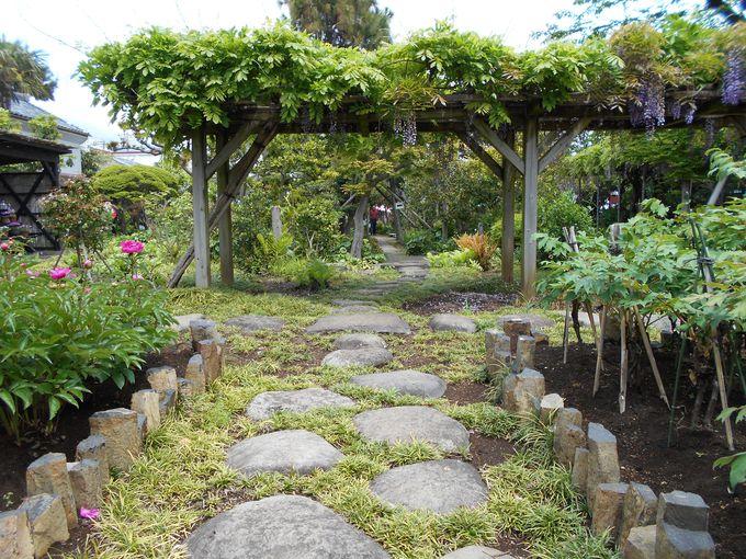 国の登録記念物になっている!歴史ある庭園「帯笑園」で開催