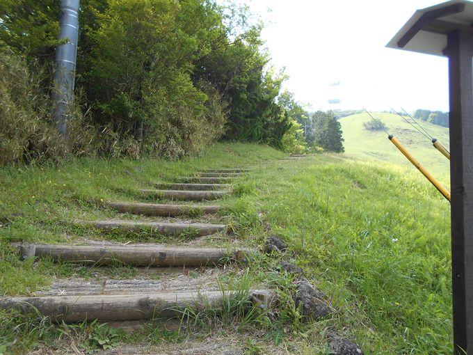 初めての人でも安心!気軽に登れるハイキングルート