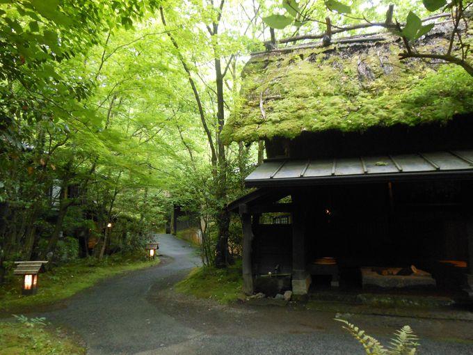 遊び心がくすぐられる!古き良き日本の風景
