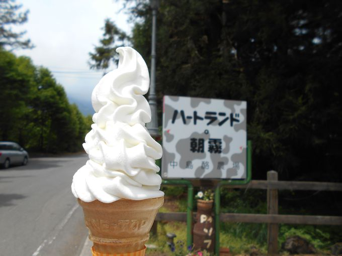 味に自信あり!「日本一」と豪語する「ハートランド・朝霧」の極旨ソフトクリーム