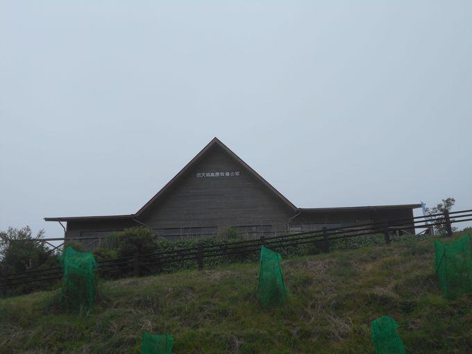 赤い三角屋根が目印!伊豆で唯一の高原牧場「西天城高原 牧場の家」