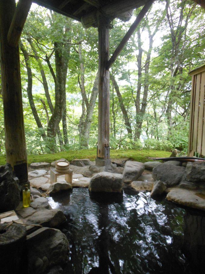 無料の露天風呂も!自家源泉の極上湯+匠の技が光る!木曽五木の湯小屋