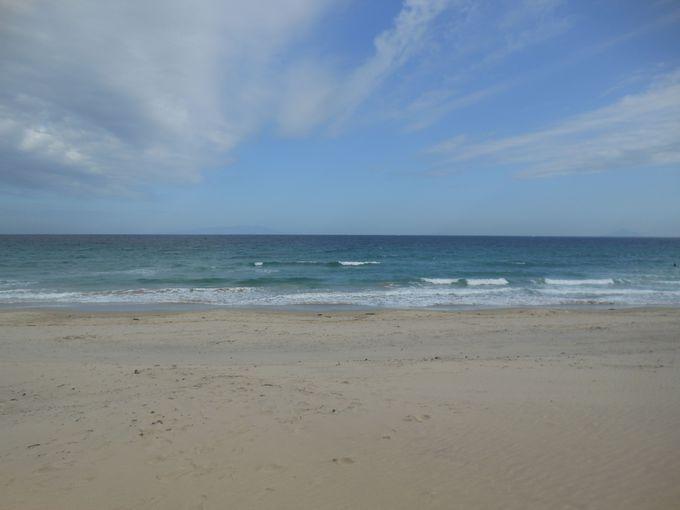 外せない魅力!伊豆半島を代表する美しいビーチ「白浜大浜海岸」も