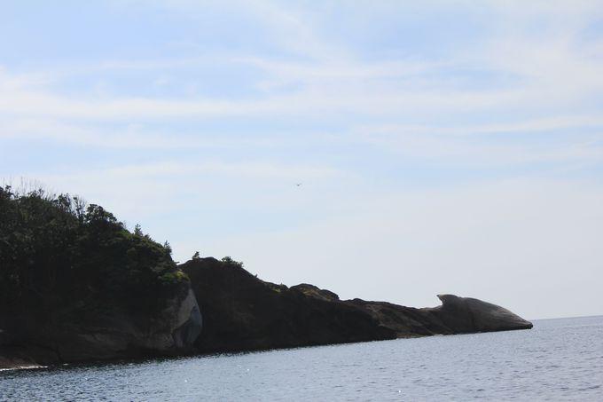 見所満載!遊覧船に乗船してから出会えるお楽しみな奇岩達