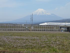 富士山+レンゲ畑で春を満喫!静岡県「富士山れんげまつり」