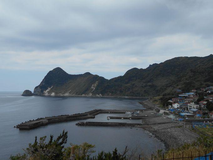 マーガレット畑+青い海が広がる絶好なロケーション