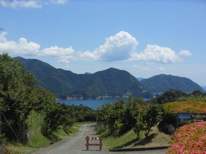 全国的に有名な恋人の聖地「恋人岬」に隣接する「白びわ狩り園」