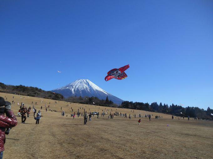 様々な凧が空を舞う!一日限定の「たこたこあがれin富士」