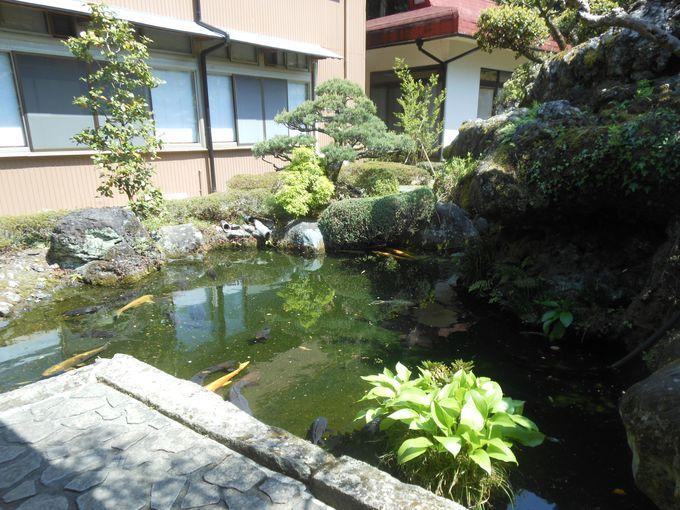 上質なタケノコの産地!里山の風情が感じられる風流な宿「芝川苑」