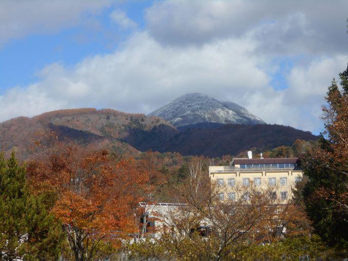白樺の美林!壮麗な山々を望む景観も見逃せない