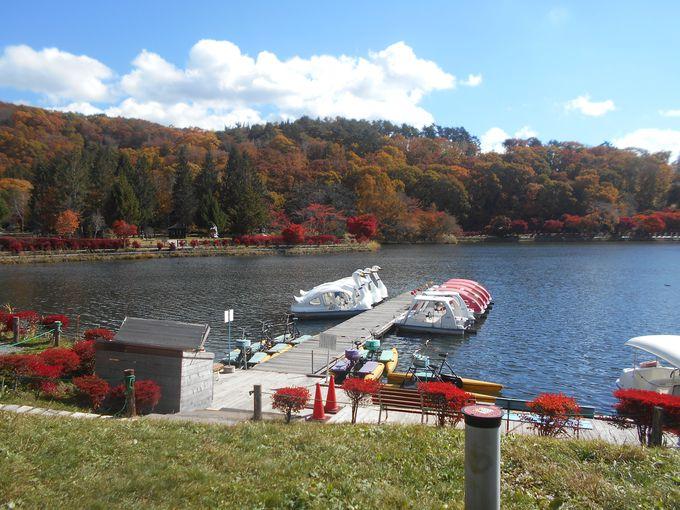 遊覧しながら湖上からの紅葉狩りも!