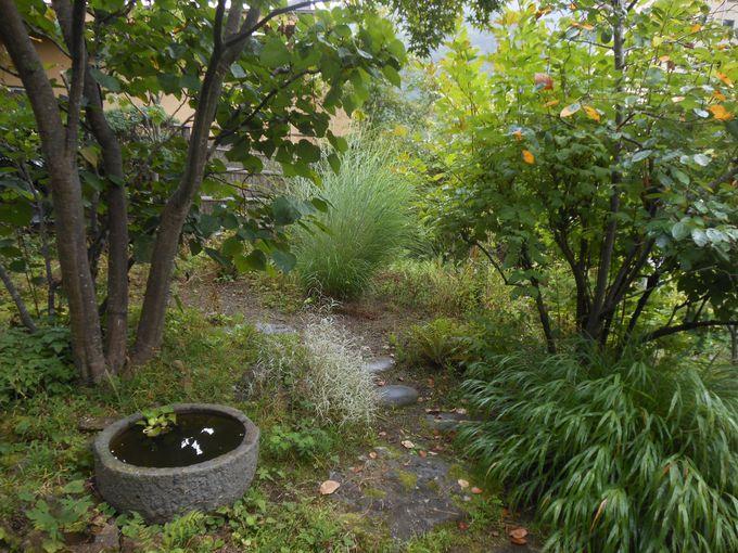 エントランスまで趣のある小道がエスコート!自然を癒しむ宿「かつら旅館」