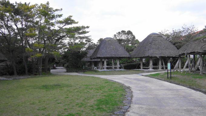1.「沖縄美ら海水族館・海洋博公園」