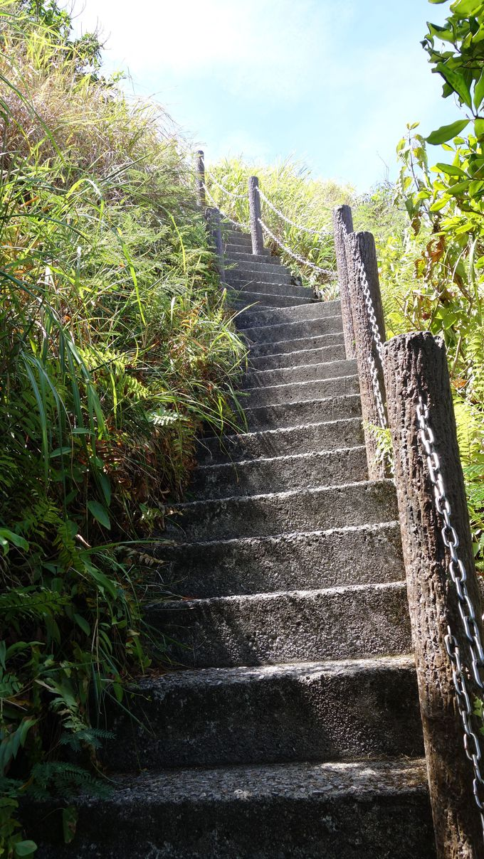 急な階段のその先には・・・