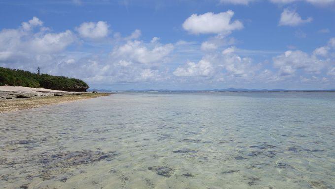 名もないビーチで綺麗な海を一人占め!