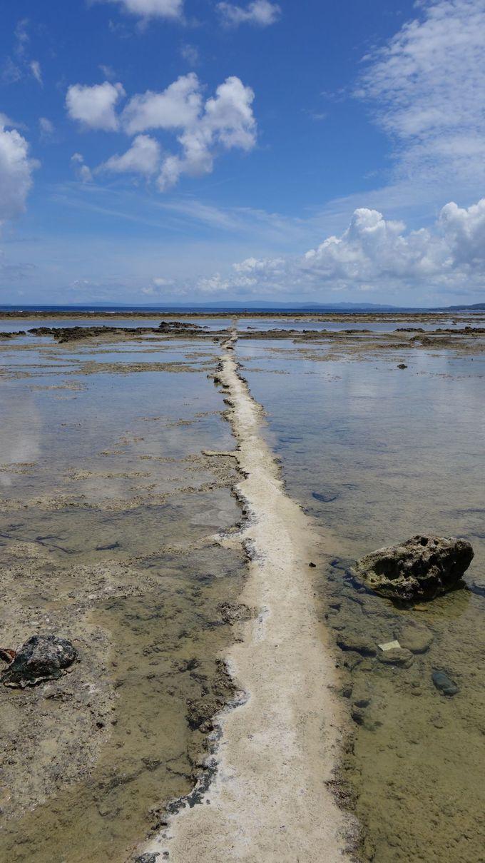 海の中に延びる一本道。通り過ぎるのはもったいない!