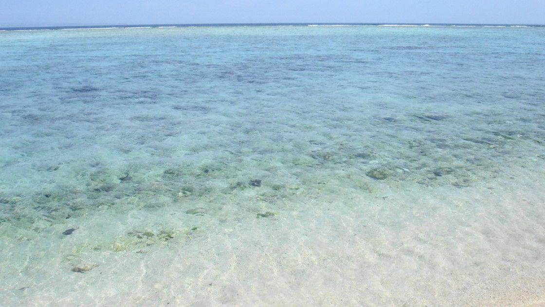 透明度の高いビーチを楽しむなら「瀬底島」