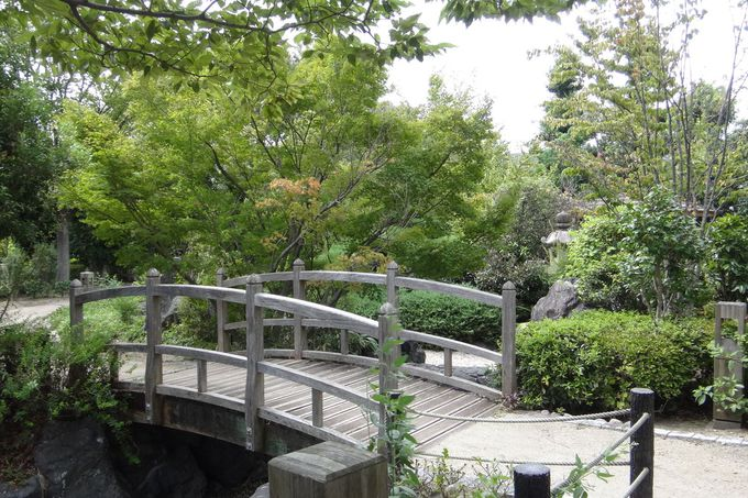 英国庭園の隣には日本庭園も!のんびり散歩できる山本新池公園