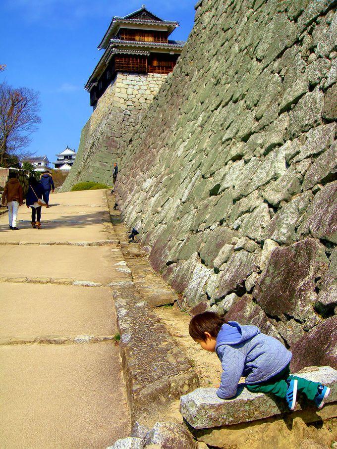 珍しい「登り石垣」は必見!そしてジャングルジムは既に始まっている!