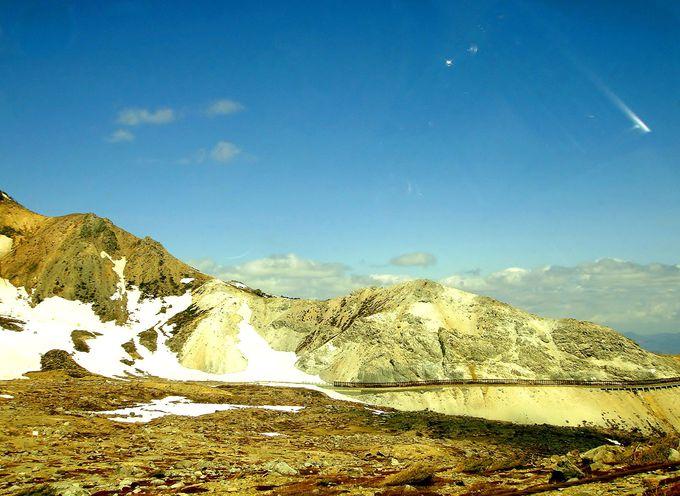 樹海から砂礫の山肌へ急激に変化する絶景を見逃すな!